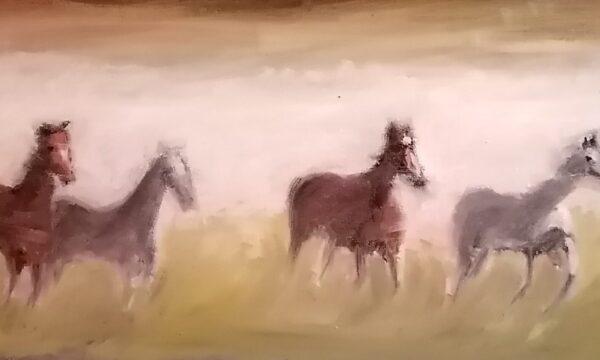 Cavalli fantasma